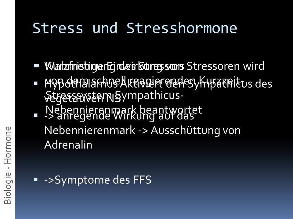 Stress und Stresshormone Kurzfristige Einwirkung von Stressoren wird von dem schnell reagierenden Kurzzeit- Stresssystem Sympathicus- Nebennierenmark