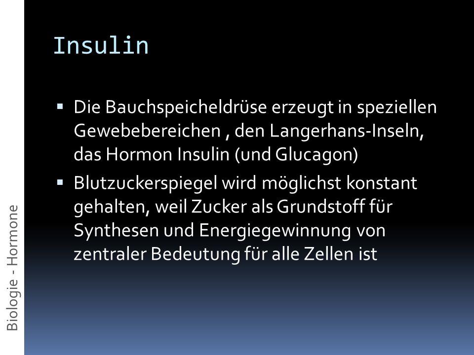 Insulin Die Bauchspeicheldrüse erzeugt in speziellen Gewebebereichen, den Langerhans-Inseln, das Hormon Insulin (und Glucagon) Blutzuckerspiegel wird