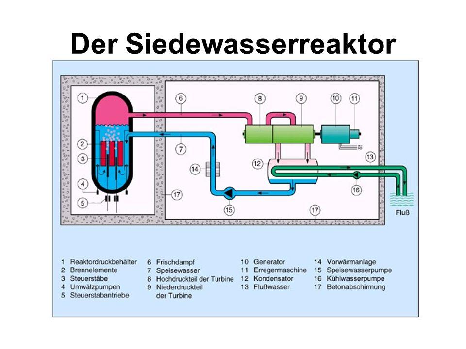 Reaktortypen Der Siedewasserreaktor (SWR) Der Druckwasserreaktor (DWR)