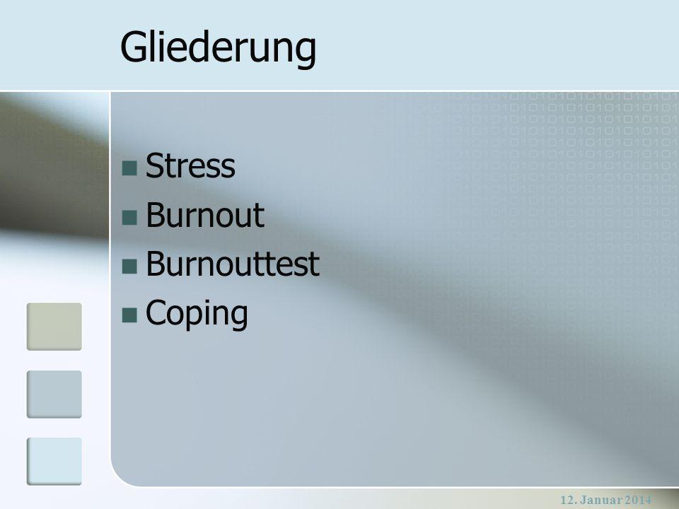 12.Januar 2014 Was ist Stress.