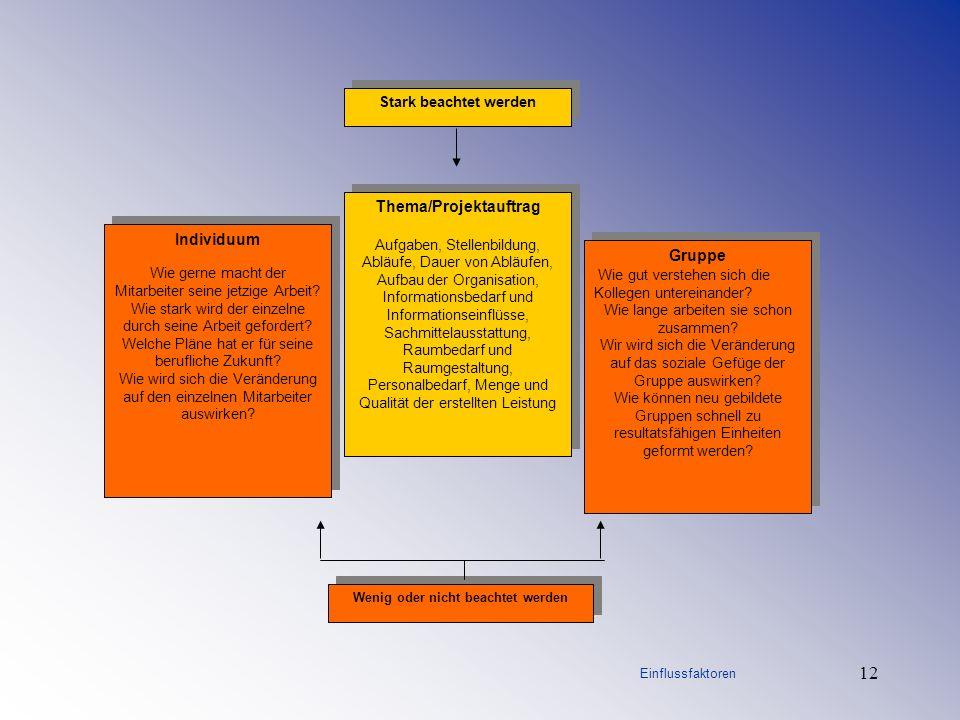 12 Stark beachtet werden Thema/Projektauftrag Aufgaben, Stellenbildung, Abläufe, Dauer von Abläufen, Aufbau der Organisation, Informationsbedarf und I