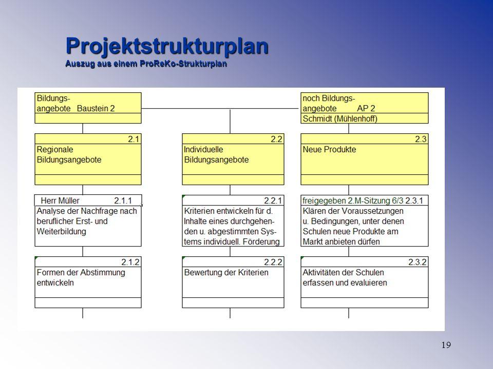 19 Projektstrukturplan Auszug aus einem ProReKo-Strukturplan