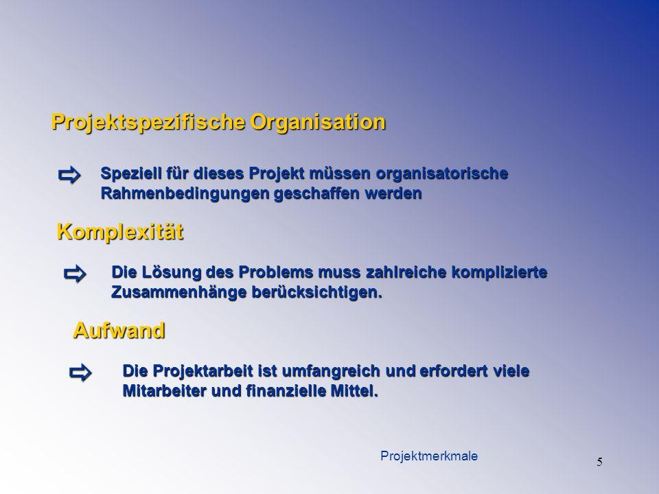 5 Projektspezifische Organisation Speziell für dieses Projekt müssen organisatorische Rahmenbedingungen geschaffen werden Komplexität Die Lösung des P