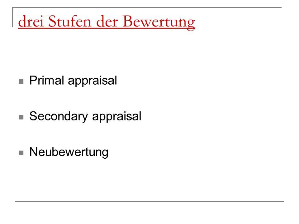 drei Stufen der Bewertung Primal appraisal Secondary appraisal Neubewertung