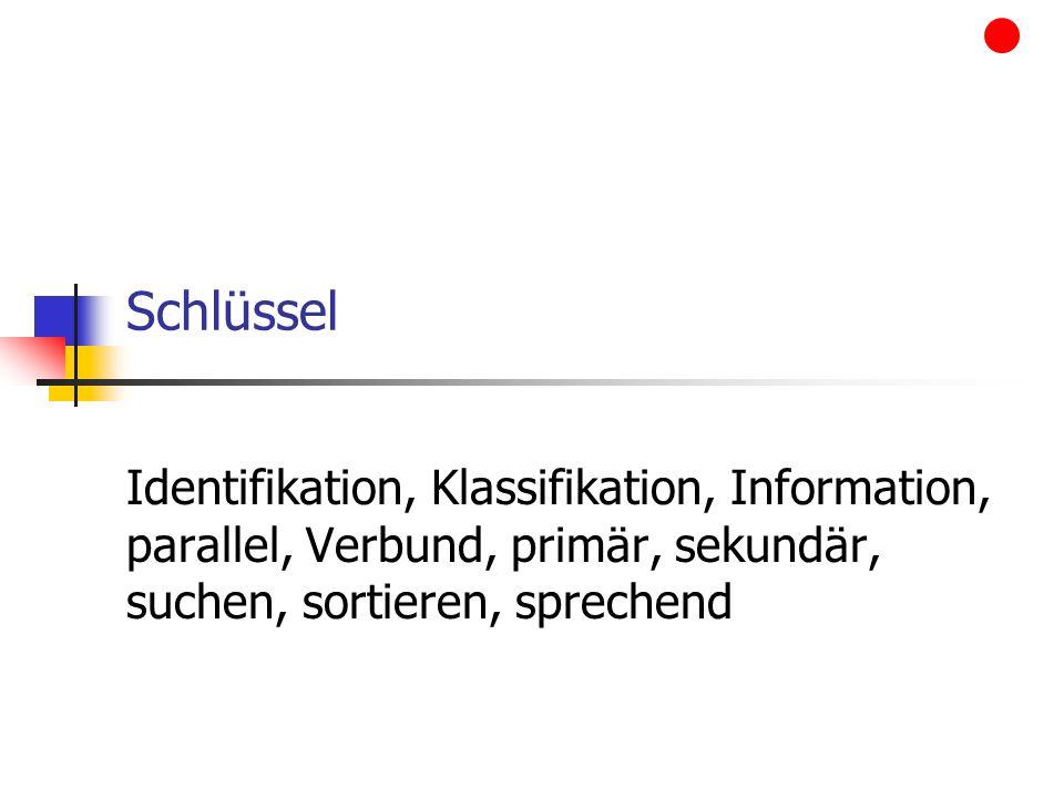 Schlüssel Identifikation, Klassifikation, Information, parallel, Verbund, primär, sekundär, suchen, sortieren, sprechend