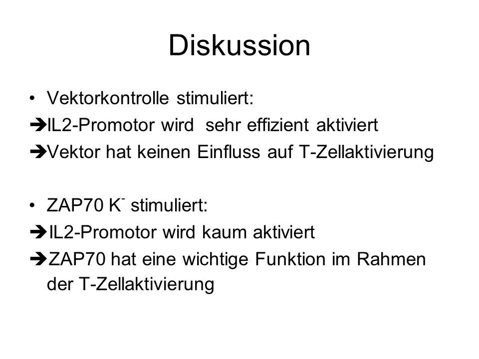 Diskussion Vektorkontrolle stimuliert: IL2-Promotor wird sehr effizient aktiviert Vektor hat keinen Einfluss auf T-Zellaktivierung ZAP70 K - stimulier