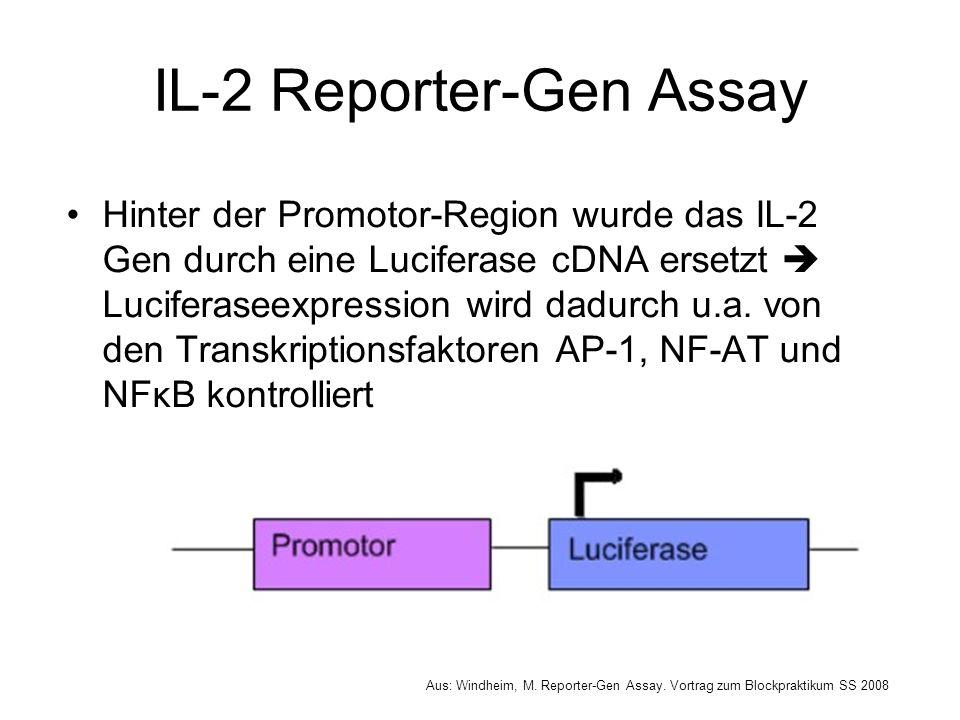Luciferase Assay System Luciferase spaltet das Substrat Luciferin in Anwesenheit von ATP zu Oxyluciferin Die emittierten Photonen können mit Hilfe eines Luminometers detektiert werden Aus: Windheim, M.
