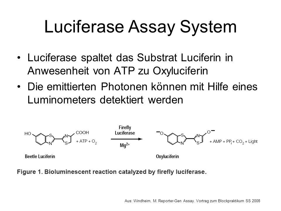 Luciferase Assay System Luciferase spaltet das Substrat Luciferin in Anwesenheit von ATP zu Oxyluciferin Die emittierten Photonen können mit Hilfe ein