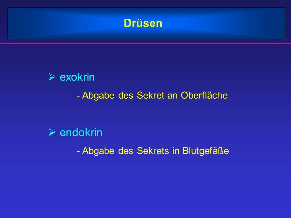 Drüsen exokrin - Abgabe des Sekret an Oberfläche endokrin - Abgabe des Sekrets in Blutgefäße