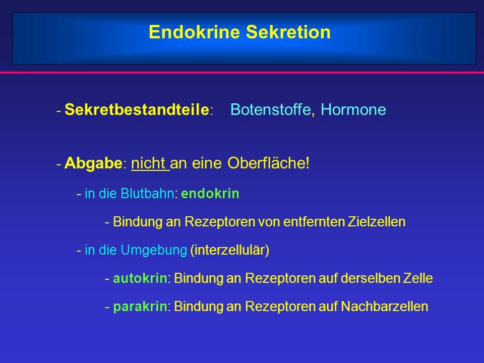 Endokrine Sekretion - Sekretbestandteile : Botenstoffe, Hormone - Abgabe : nicht an eine Oberfläche.
