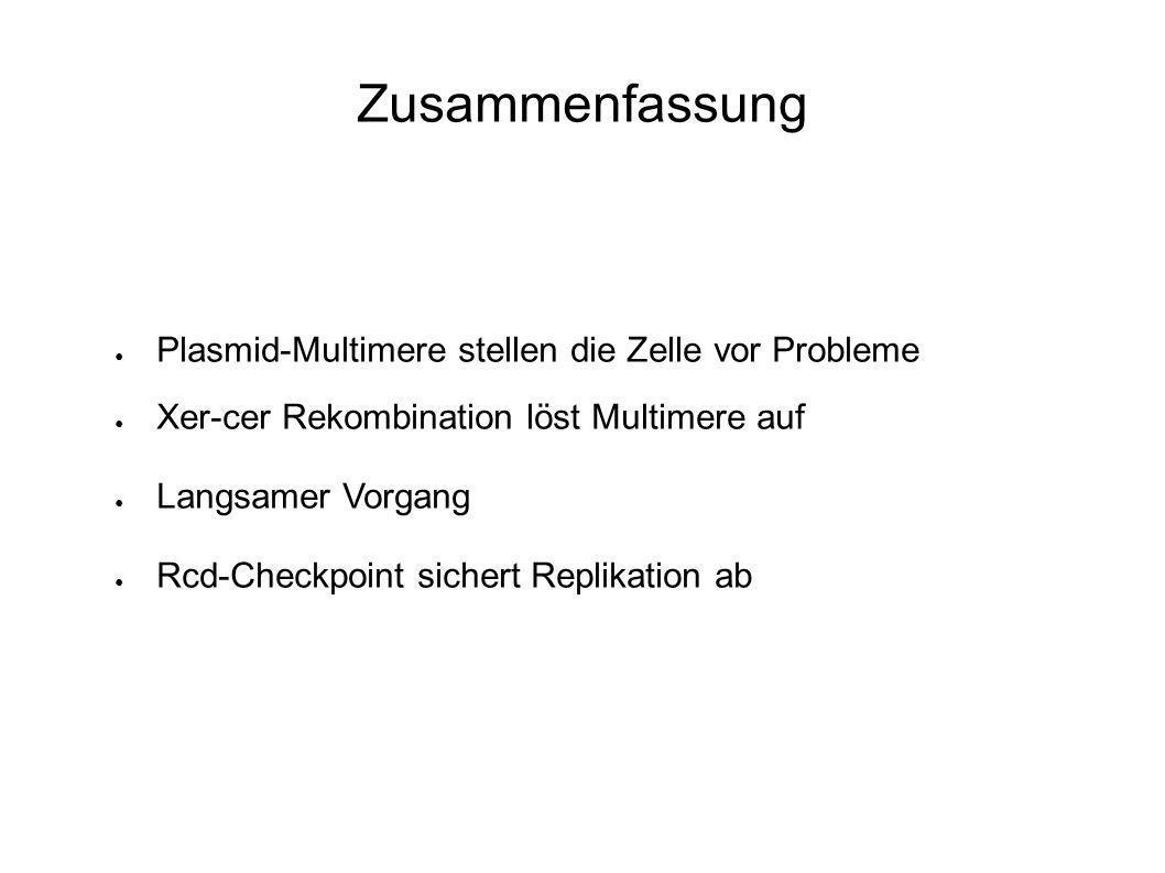 Zusammenfassung Plasmid-Multimere stellen die Zelle vor Probleme Xer-cer Rekombination löst Multimere auf Langsamer Vorgang Rcd-Checkpoint sichert Replikation ab