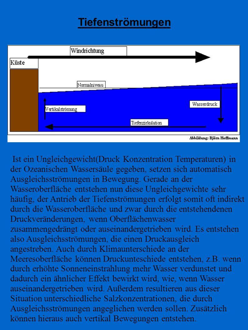 Tiefenströmungen Ist ein Ungleichgewicht(Druck Konzentration Temperaturen) in der Ozeanischen Wassersäule gegeben, setzen sich automatisch Ausgleichss