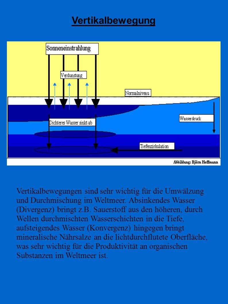 Vertikalbewegung Vertikalbewegungen sind sehr wichtig für die Umwälzung und Durchmischung im Weltmeer. Absinkendes Wasser (Divergenz) bringt z.B. Saue