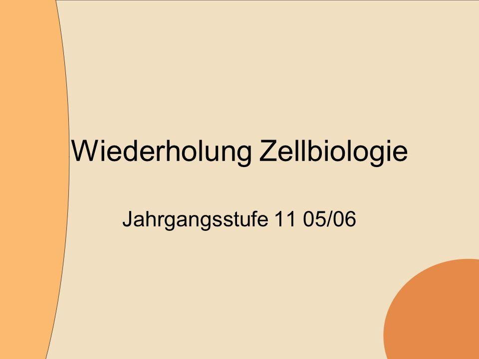 Wiederholung Zellbiologie Jahrgangsstufe 11 05/06