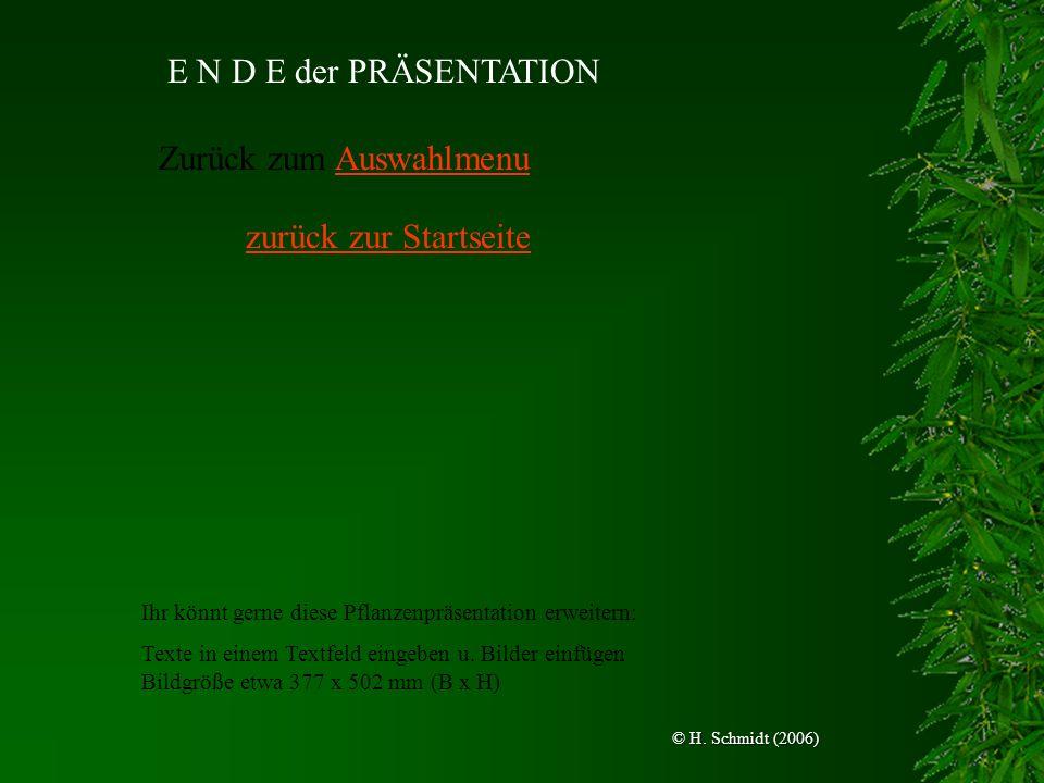 E N D E der PRÄSENTATION Zurück zum AuswahlmenuAuswahlmenu zurück zur Startseite © H. Schmidt (2006) Ihr könnt gerne diese Pflanzenpräsentation erweit