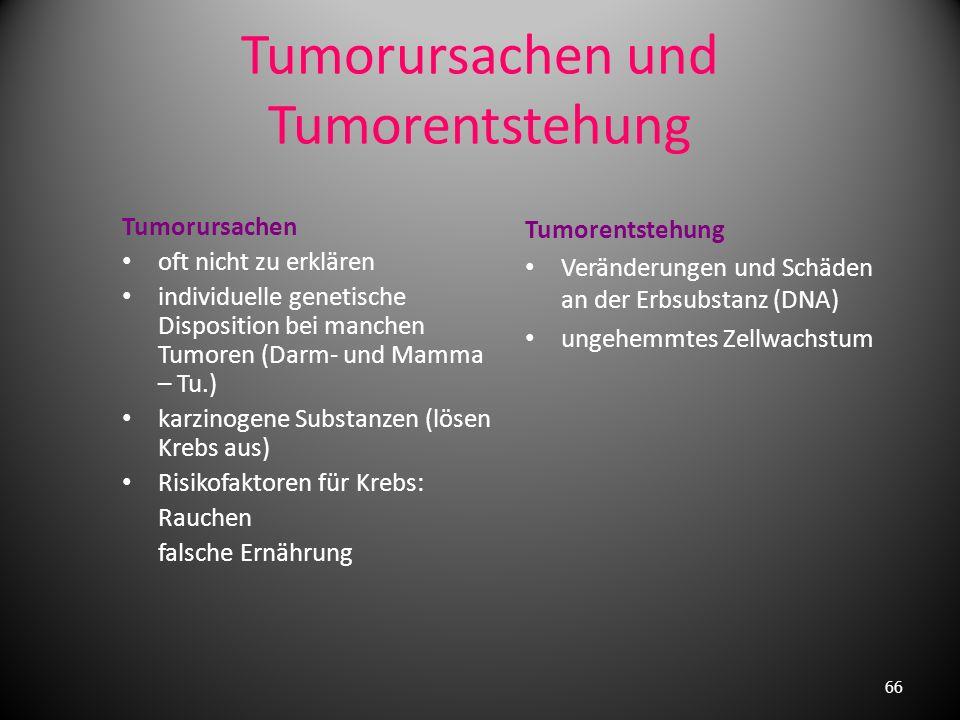 Was ist eine Präcancerose, was ist ein Carcinoma in situ (CiS) ……? Präcancerose = Vorstadium eines Krebses 1. fakultative Präcancerosen nur gelegentli