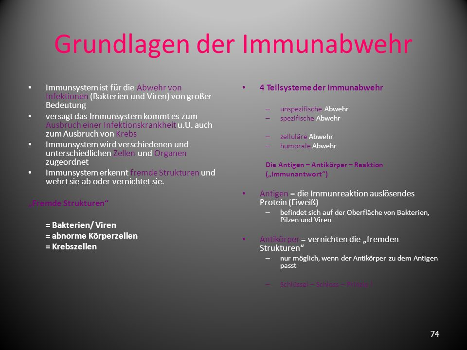 8.Das Immunsystem 73