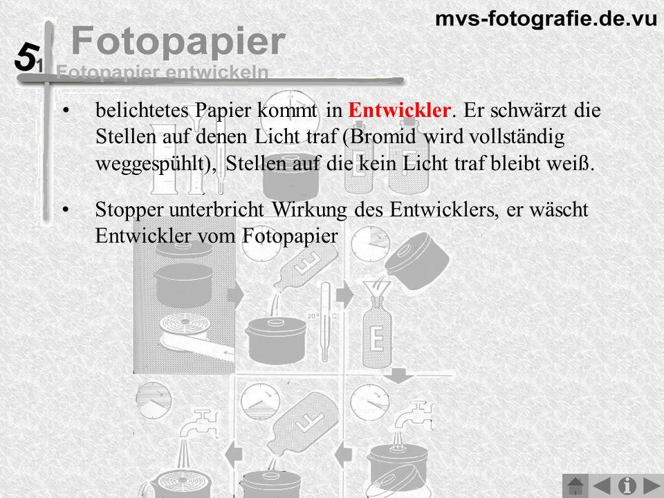 Stopper unterbricht Wirkung des Entwicklers, er wäscht Entwickler vom Fotopapier