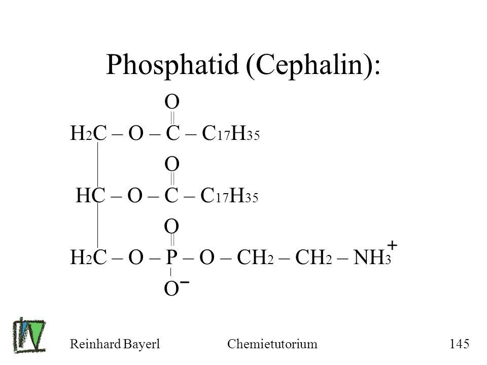 Reinhard BayerlChemietutorium145 Phosphatid (Cephalin): O H 2 C – O – C – C 17 H 35 O HC – O – C – C 17 H 35 O H 2 C – O – P – O – CH 2 – CH 2 – NH 3