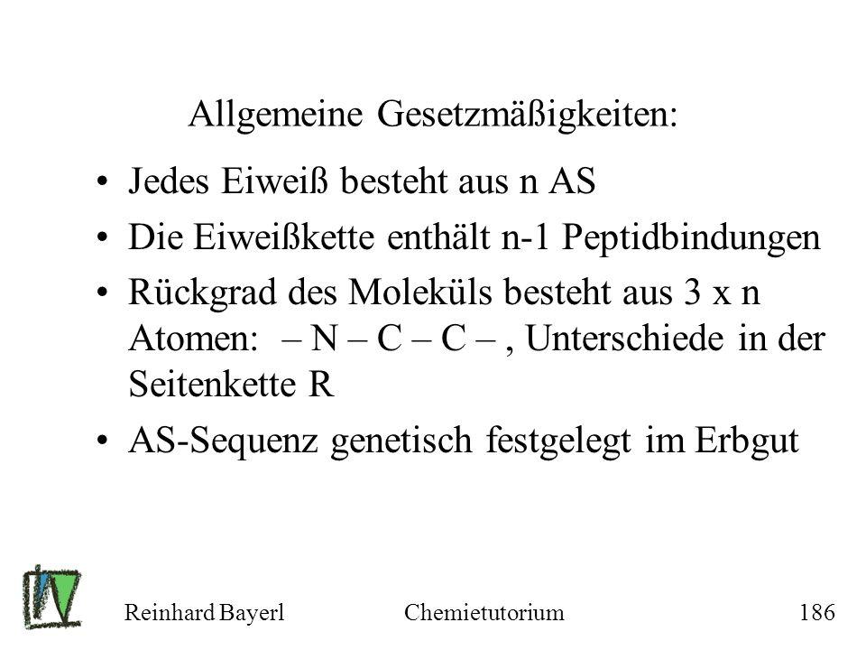 Reinhard BayerlChemietutorium186 Allgemeine Gesetzmäßigkeiten: Jedes Eiweiß besteht aus n AS Die Eiweißkette enthält n-1 Peptidbindungen Rückgrad des