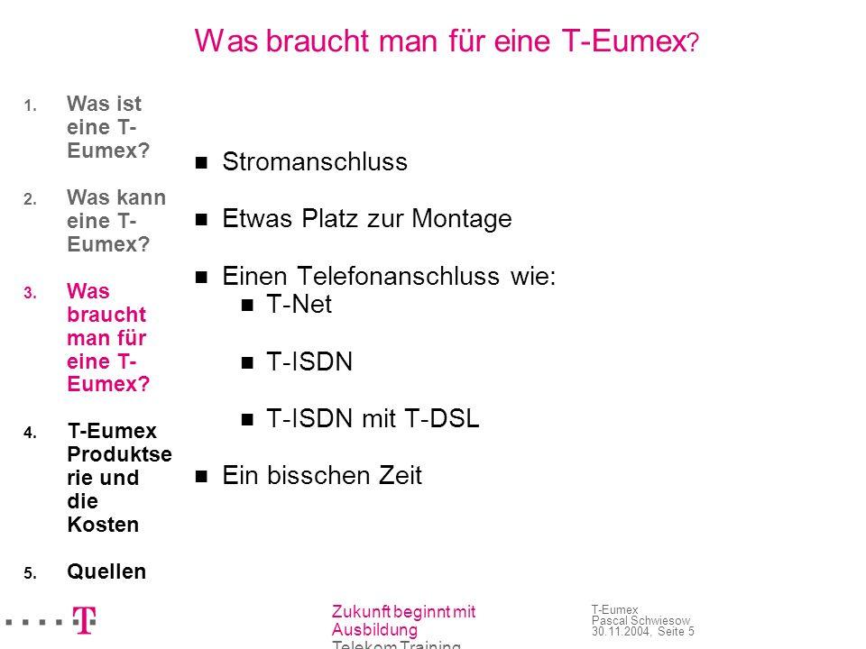 Zukunft beginnt mit Ausbildung Telekom Training T-Eumex Pascal Schwiesow 30.11.2004, Seite 5 Was braucht man für eine T-Eumex ? Stromanschluss Etwas P