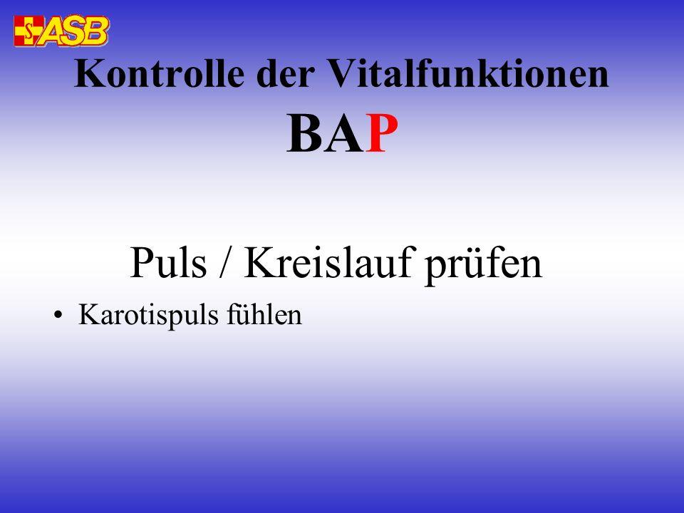 Puls / Kreislauf prüfen Karotispuls fühlen Kontrolle der Vitalfunktionen BAP
