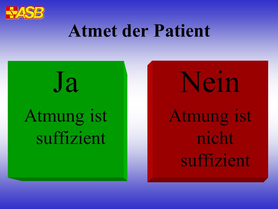 Atmet der Patient Ja Atmung ist suffizient Nein Atmung ist nicht suffizient