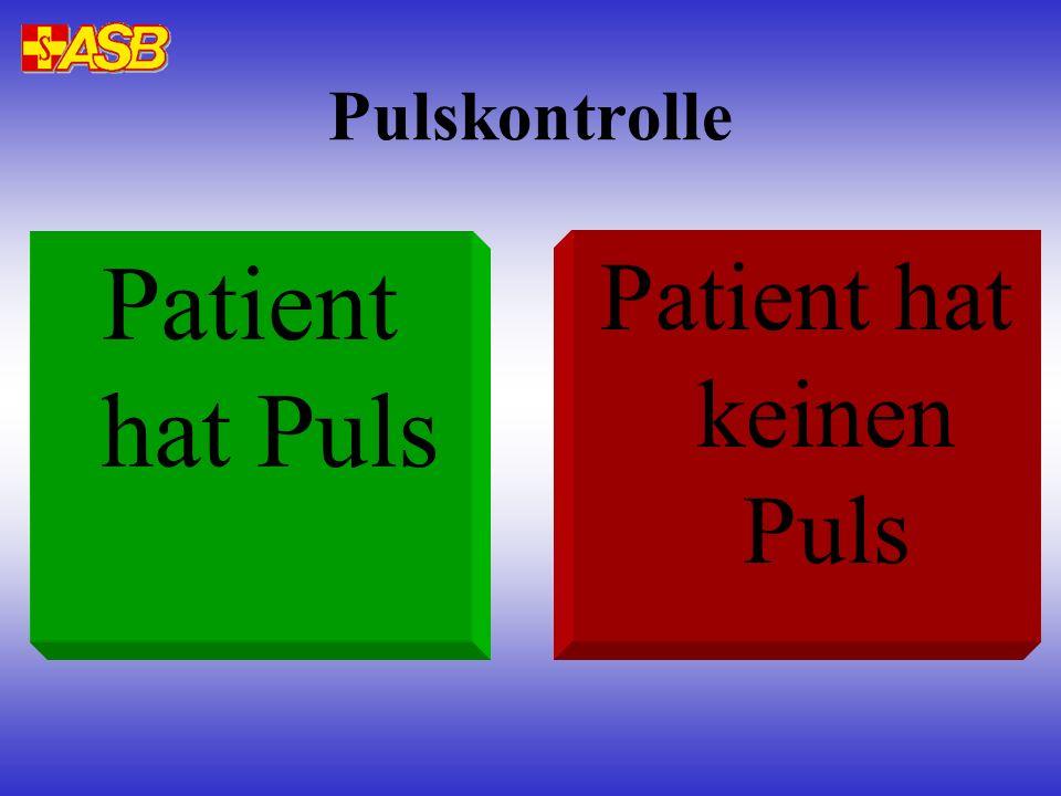 Pulskontrolle Patient hat Puls Patient hat keinen Puls
