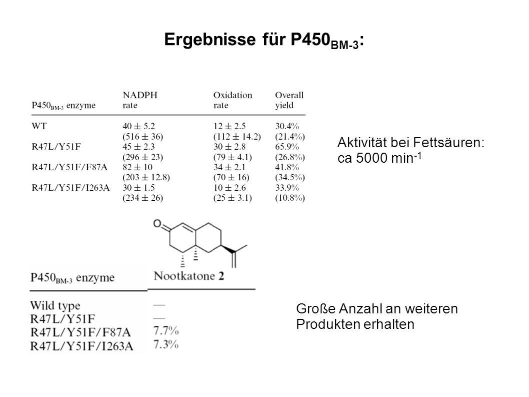 Ergebnisse für P450 BM-3 : Große Anzahl an weiteren Produkten erhalten Aktivität bei Fettsäuren: ca 5000 min -1