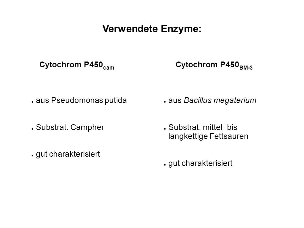 Verwendete Enzyme: Cytochrom P450 cam Cytochrom P450 BM-3 aus Pseudomonas putida Substrat: Campher gut charakterisiert aus Bacillus megaterium Substra
