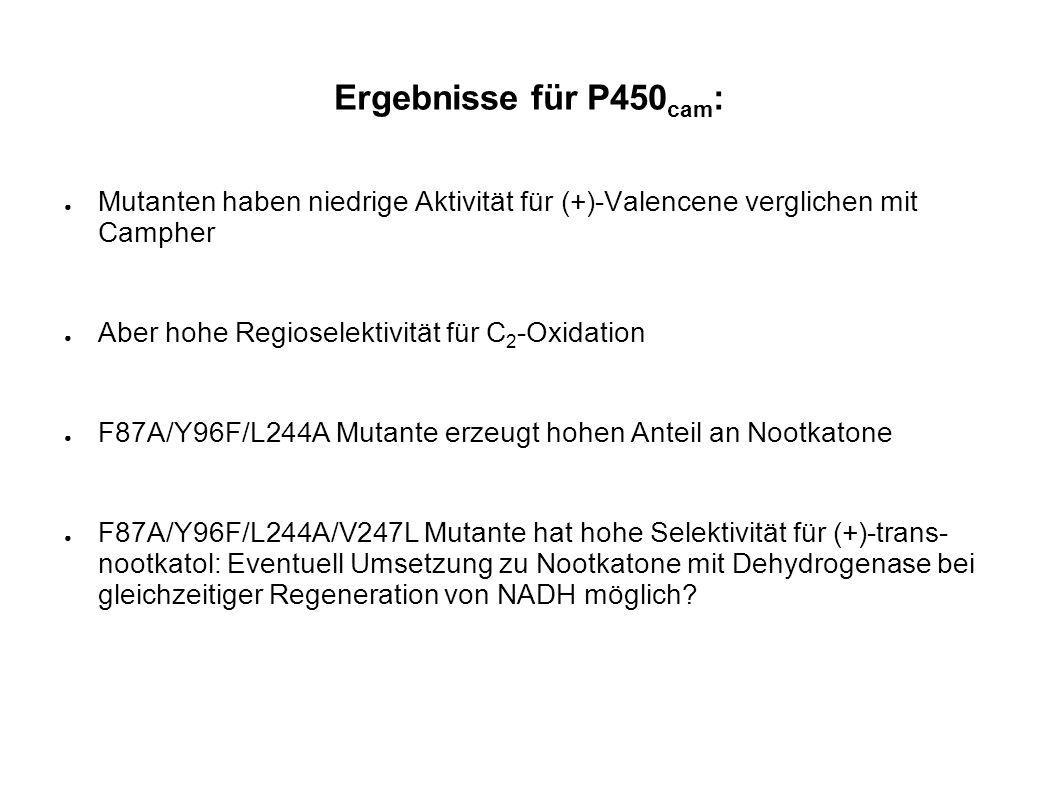 Ergebnisse für P450 cam : Mutanten haben niedrige Aktivität für (+)-Valencene verglichen mit Campher Aber hohe Regioselektivität für C 2 -Oxidation F8