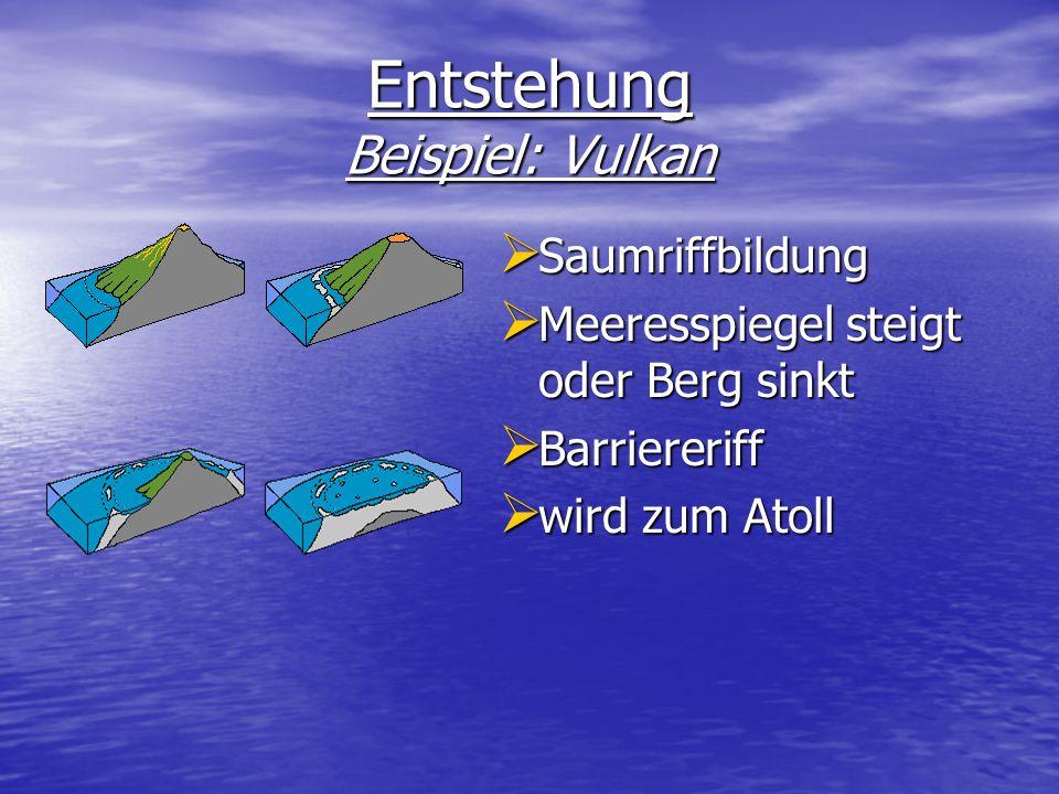Entstehung Beispiel: Vulkan Saumriffbildung Saumriffbildung Meeresspiegel steigt oder Berg sinkt Meeresspiegel steigt oder Berg sinkt Barriereriff Bar