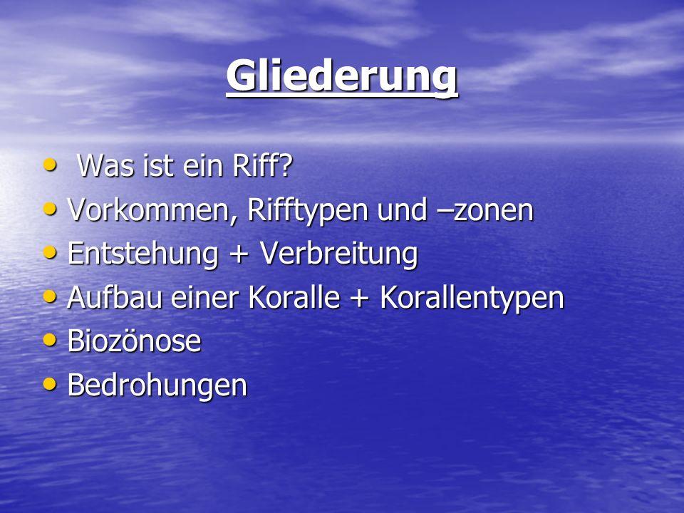 Gliederung Was ist ein Riff? Was ist ein Riff? Vorkommen, Rifftypen und –zonen Vorkommen, Rifftypen und –zonen Entstehung + Verbreitung Entstehung + V