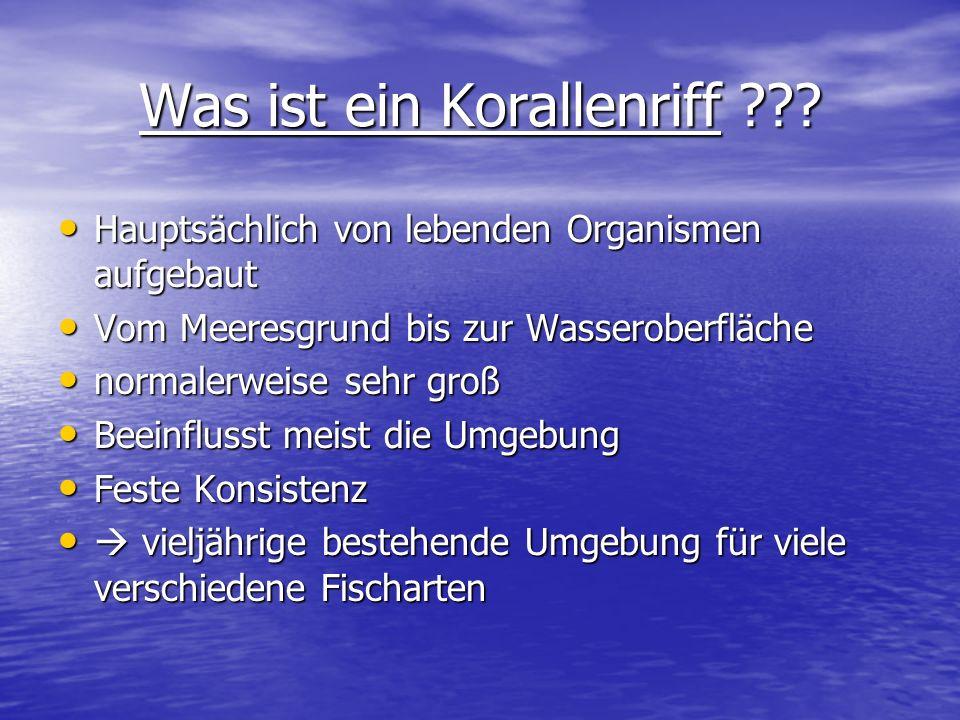 Was ist ein Korallenriff ??? Hauptsächlich von lebenden Organismen aufgebaut Hauptsächlich von lebenden Organismen aufgebaut Vom Meeresgrund bis zur W