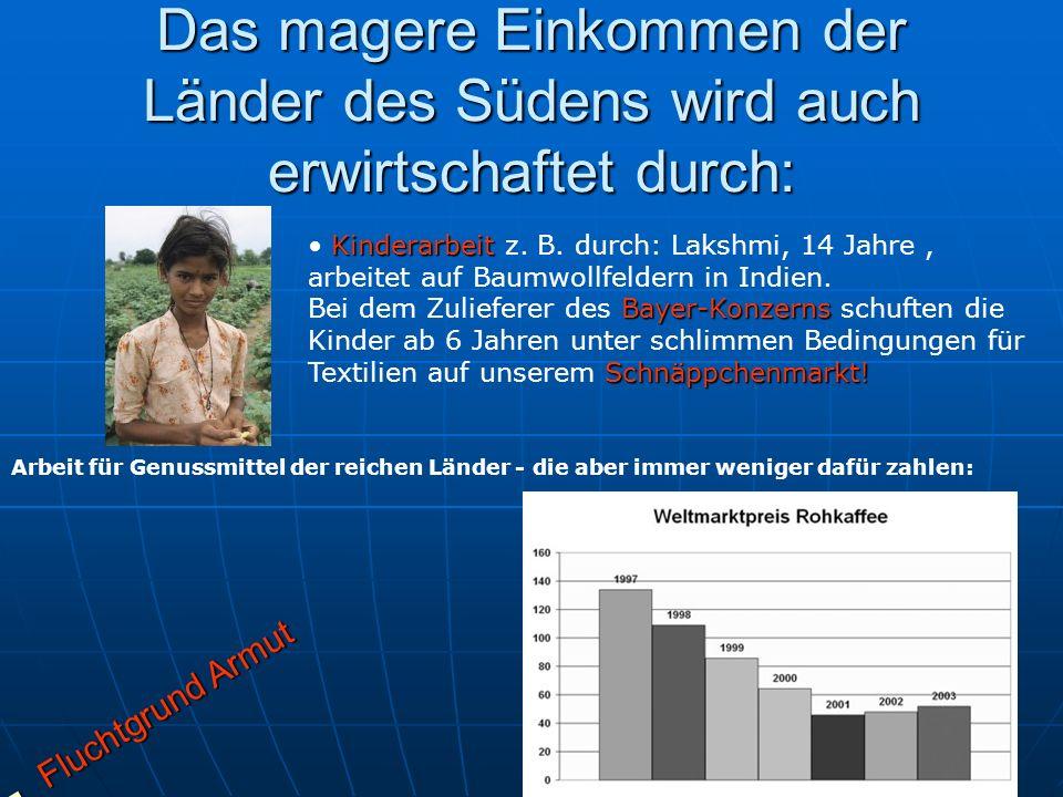 Das magere Einkommen der Länder des Südens wird auch erwirtschaftet durch: Kinderarbeit Bayer-Konzerns Schnäppchenmarkt! Kinderarbeit z. B. durch: Lak