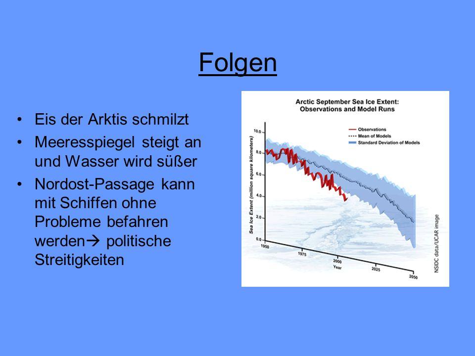 Störung in der Nahrungskette weil Wasser zu warm wird Tiere der Arktis (z.B.
