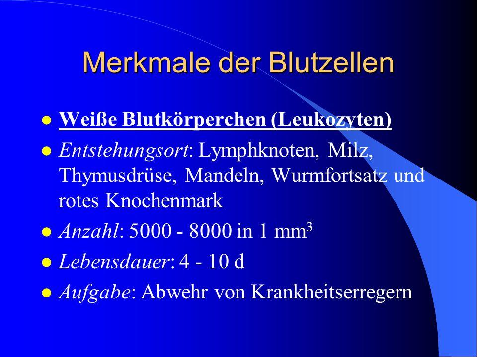 Merkmale der Blutzellen l Weiße Blutkörperchen (Leukozyten) l Entstehungsort: Lymphknoten, Milz, Thymusdrüse, Mandeln, Wurmfortsatz und rotes Knochenmark l Anzahl: 5000 - 8000 in 1 mm 3 l Lebensdauer: 4 - 10 d l Aufgabe: Abwehr von Krankheitserregern