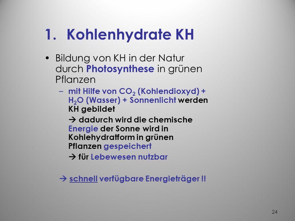 23 Der Energie- und Baustoffwechsel der Zelle die wichtigsten Energieträger sind 1.Kohlenhydrate (KH) 2.Fette und fettähnliche Stoffe 3.Proteine (Eiwe