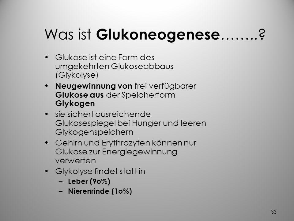 32 Eine besondere Form der Glukose ist ihre Speicherform Glykogen bei ausreichendem Angebot von Glukose Speicherung in der Leber und Skelettmuskulatur