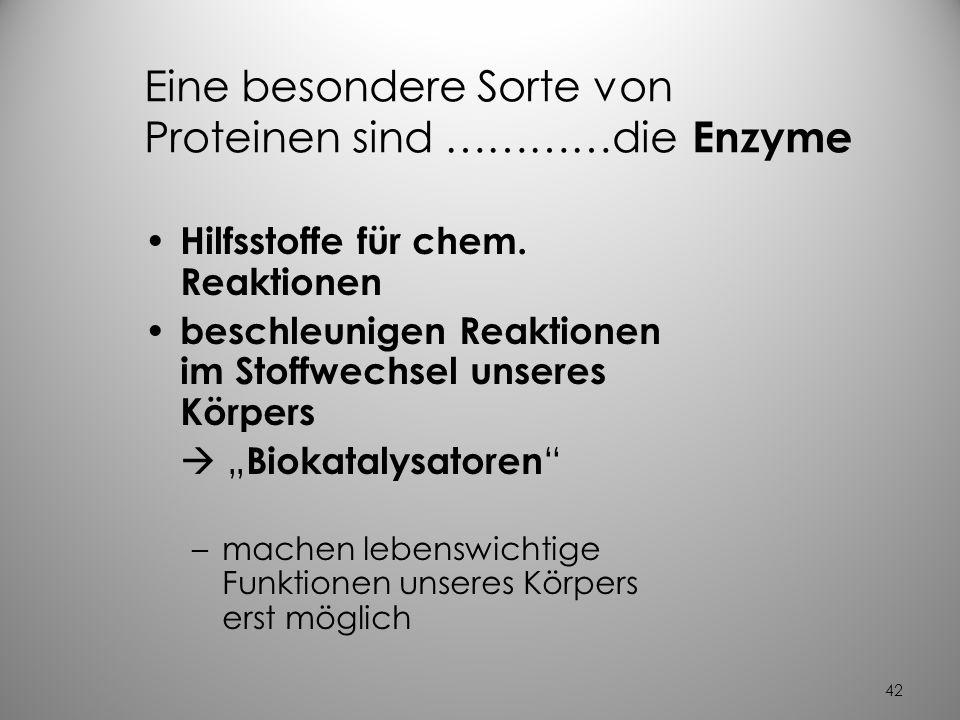 41 3.Proteine (Eiweiße) Alles was der Mensch ist, ist er durch seine Proteine !! Proteine sind wichtig für – Struktur und Form des Körpers und seiner