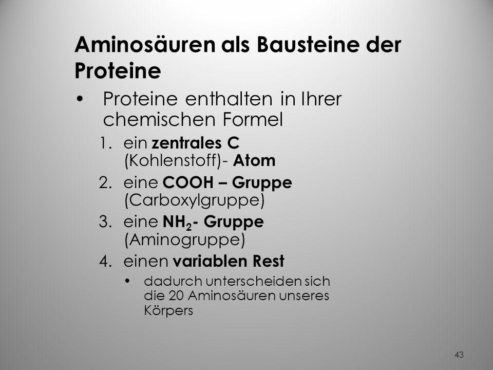 42 Eine besondere Sorte von Proteinen sind …………die Enzyme Hilfsstoffe für chem. Reaktionen beschleunigen Reaktionen im Stoffwechsel unseres Körpers Bi