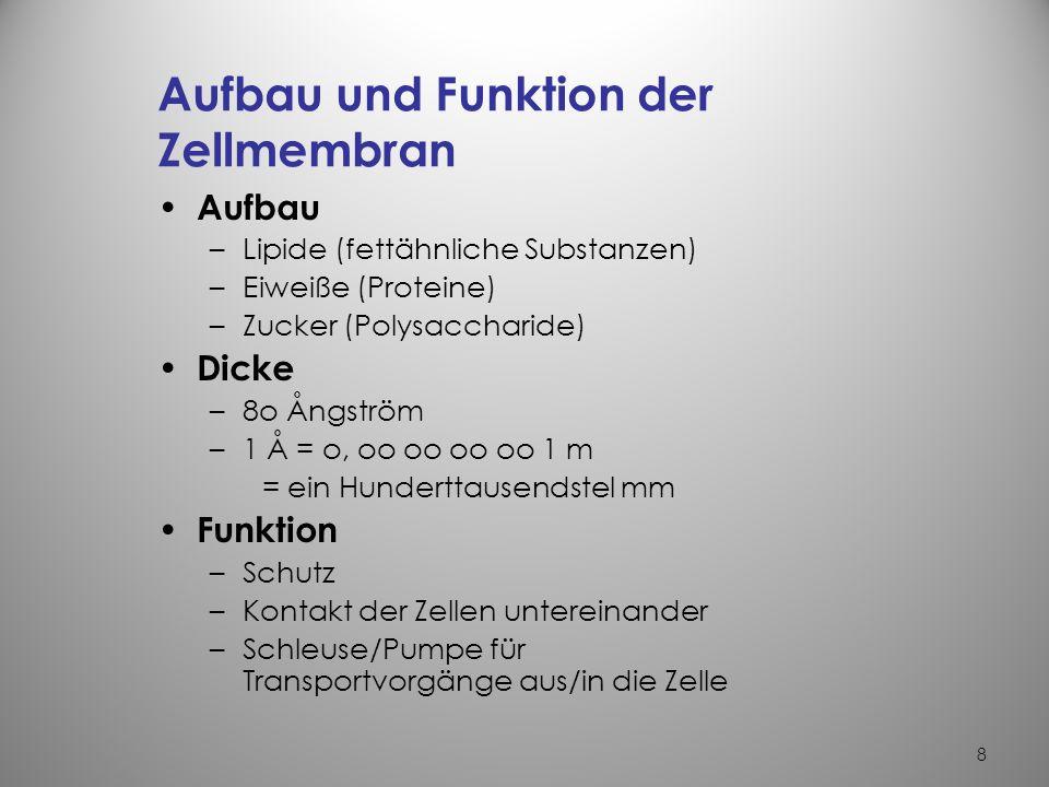 38 Die mehrfach ungesättigten (sog.