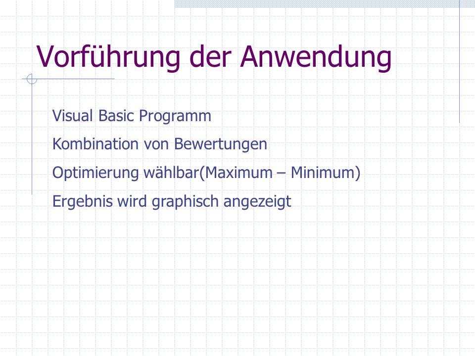 Vorführung der Anwendung Visual Basic Programm Kombination von Bewertungen Optimierung wählbar(Maximum – Minimum) Ergebnis wird graphisch angezeigt
