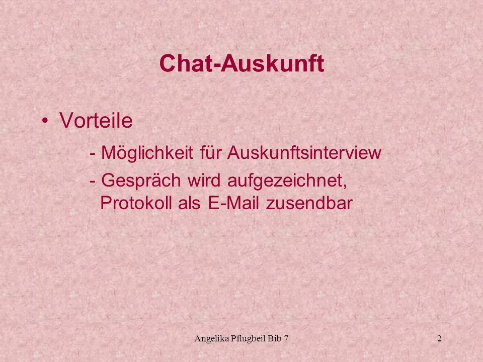 Angelika Pflugbeil Bib 73 Chat-Auskunft Nachteile - Schriftsprache anders als gesprochene Sprache - lange Wartezeit ungeduldig sein