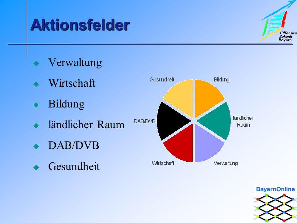AktionsfelderAktionsfelder Verwaltung Wirtschaft Bildung ländlicher Raum DAB/DVB Gesundheit