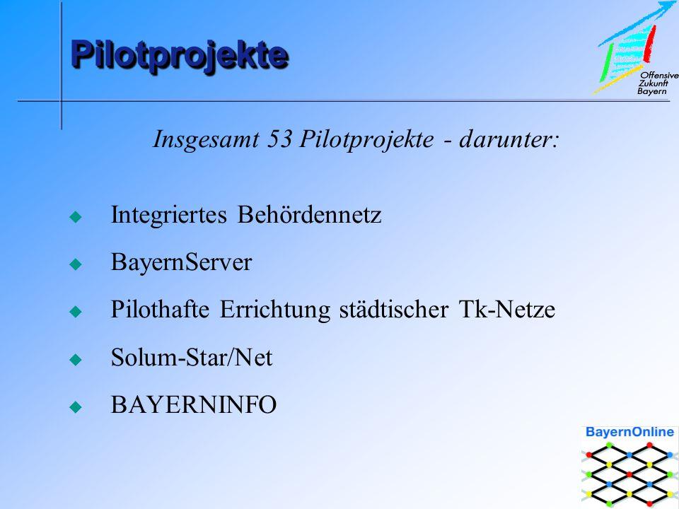 PilotprojektePilotprojekte Insgesamt 53 Pilotprojekte - darunter: Integriertes Behördennetz BayernServer Pilothafte Errichtung städtischer Tk-Netze Solum-Star/Net BAYERNINFO