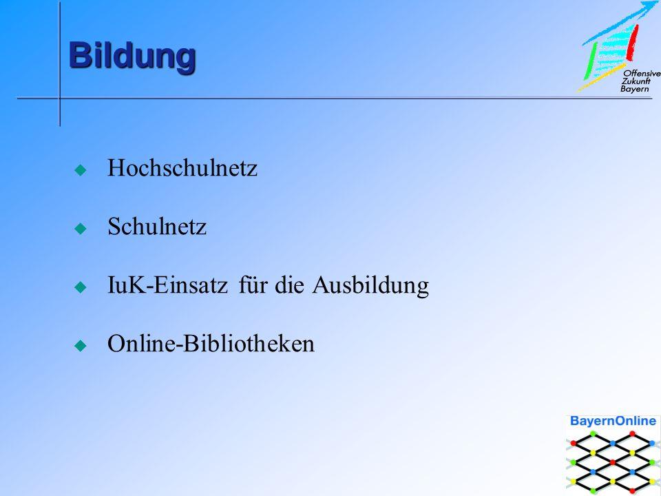 BildungBildung Hochschulnetz Schulnetz IuK-Einsatz für die Ausbildung Online-Bibliotheken