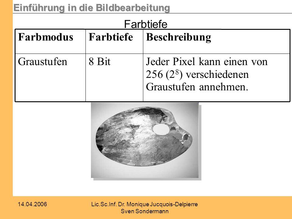 Einführung in die Bildbearbeitung 14.04.2006Lic.Sc.Inf. Dr. Monique Jucquois-Delpierre Sven Sondermann Farbtiefe Jeder Pixel kann einen von 256 (2 8 )