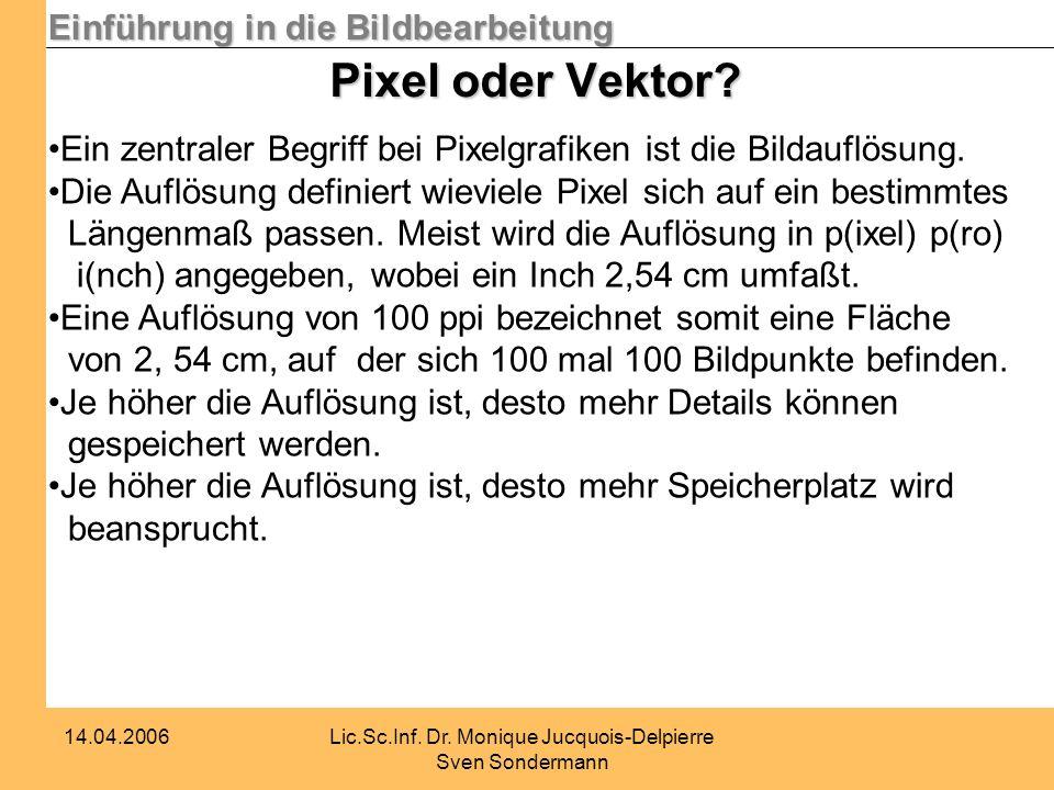 Einführung in die Bildbearbeitung 14.04.2006Lic.Sc.Inf. Dr. Monique Jucquois-Delpierre Sven Sondermann Pixel oder Vektor? Ein zentraler Begriff bei Pi