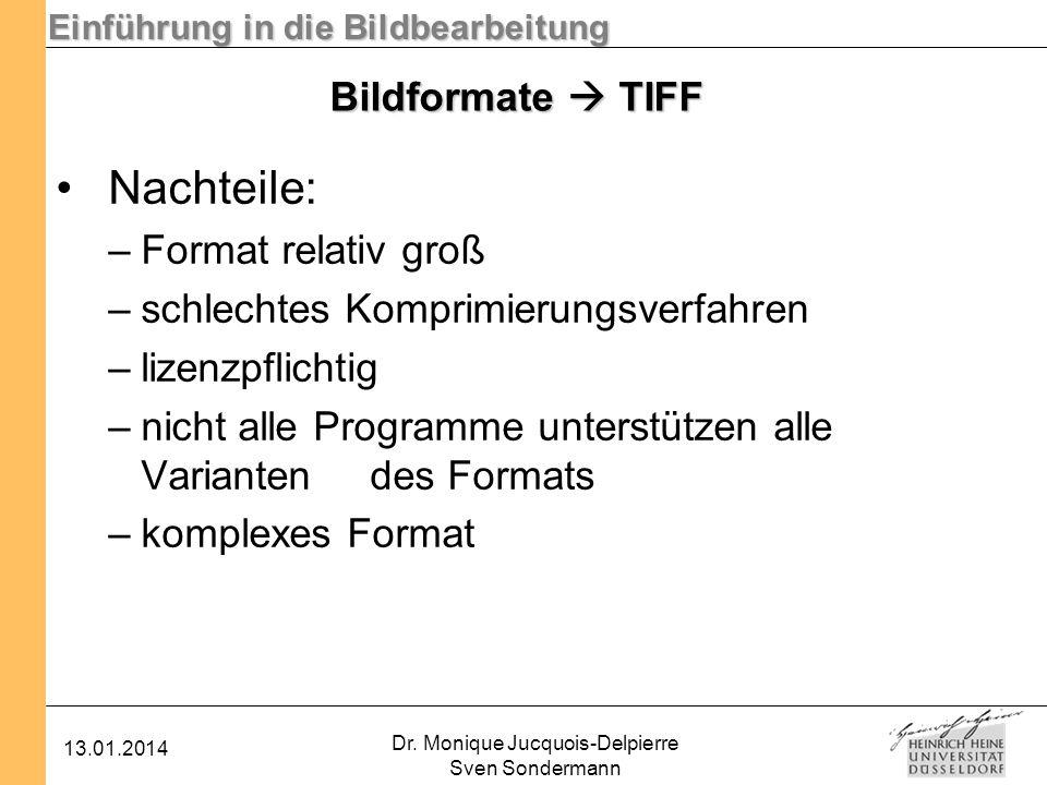 Einführung in die Bildbearbeitung 13.01.2014 Dr. Monique Jucquois-Delpierre Sven Sondermann Bildformate TIFF Nachteile: –Format relativ groß –schlecht